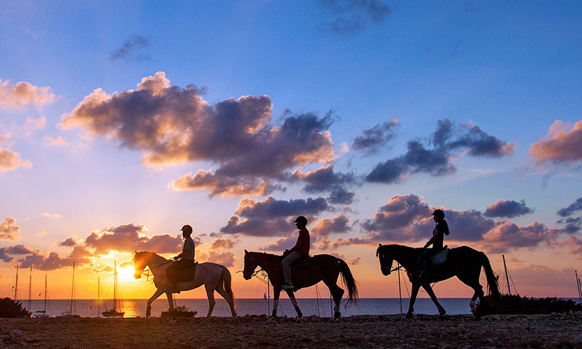 Horse riding on Formentera